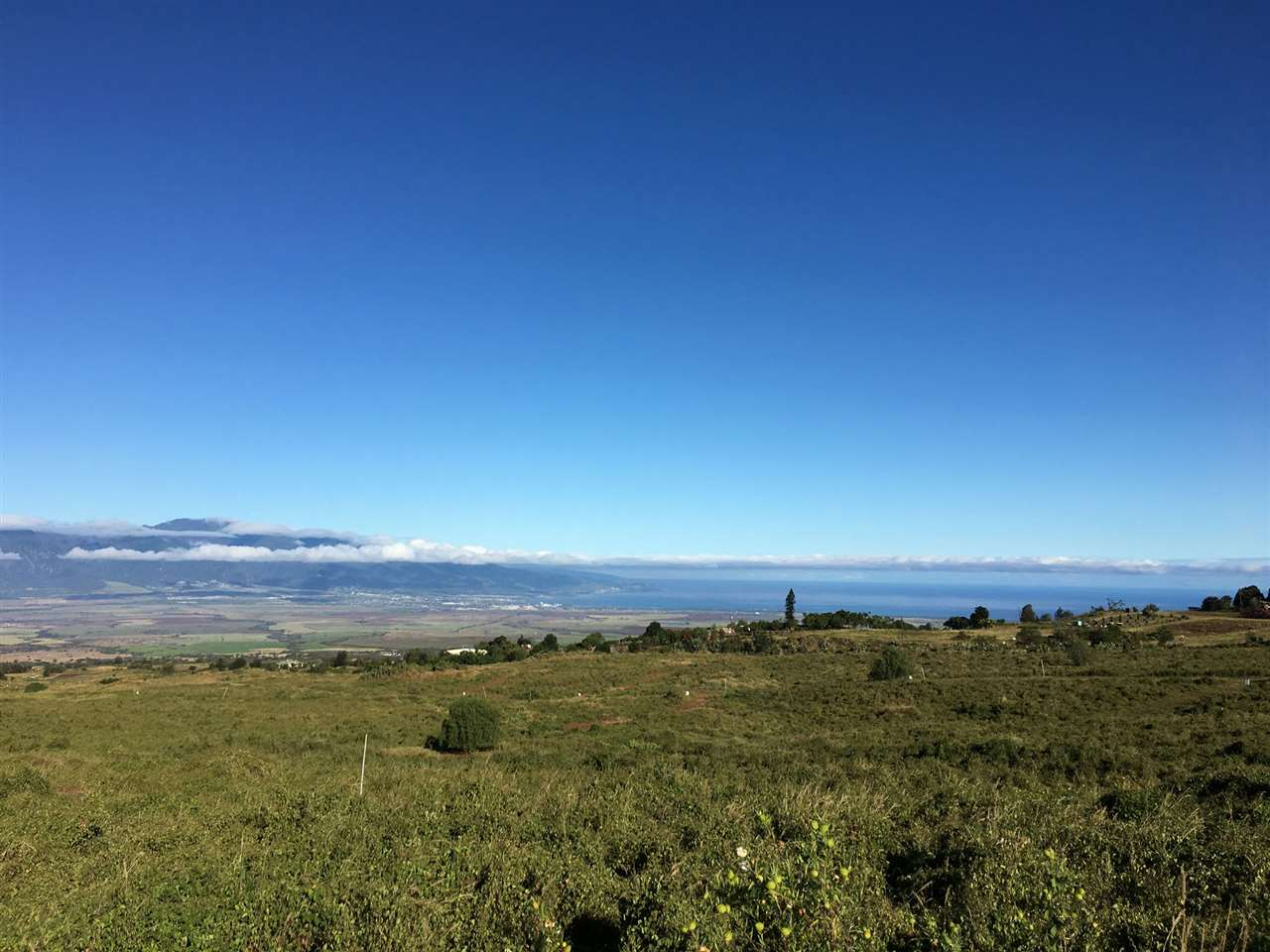 180 Kula Io Rd  Lot #Lot #35 in Lower Kula