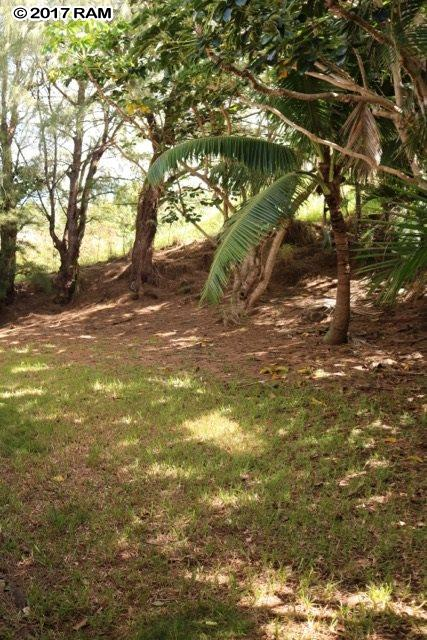 5210C Lower Honoapiilani Rd in Napili