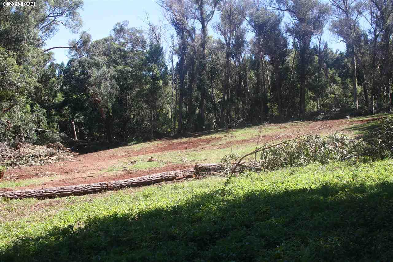 125 Ehu Rd  Lot #Unit E in Makawao