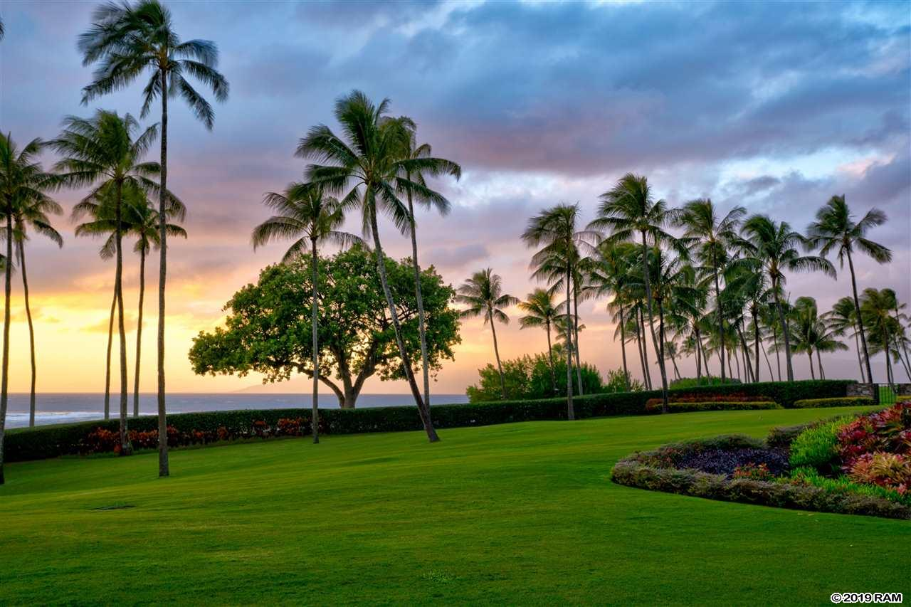 Coconut Grove #33 in Kapalua
