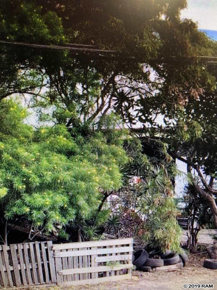 1362 Lower Main St in Wailuku